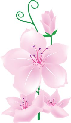 Floral clipart pink flower Exotic Red Clipart Clipart cris