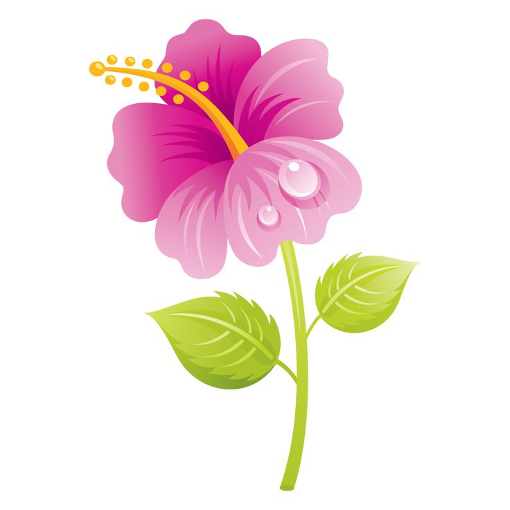 Floral clipart pretty flower CLIP on art ART Pinterest