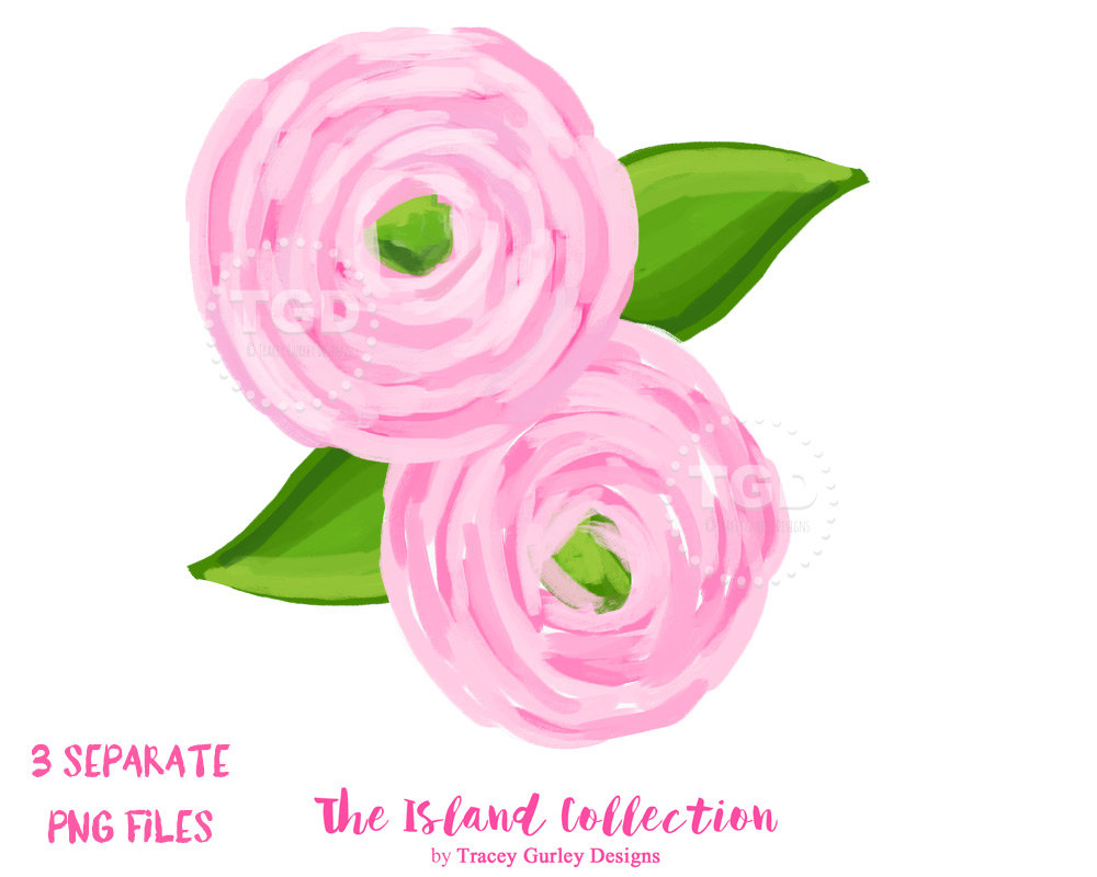 Ranuncula clipart coral flower Digital watercolor Pink clip clipart