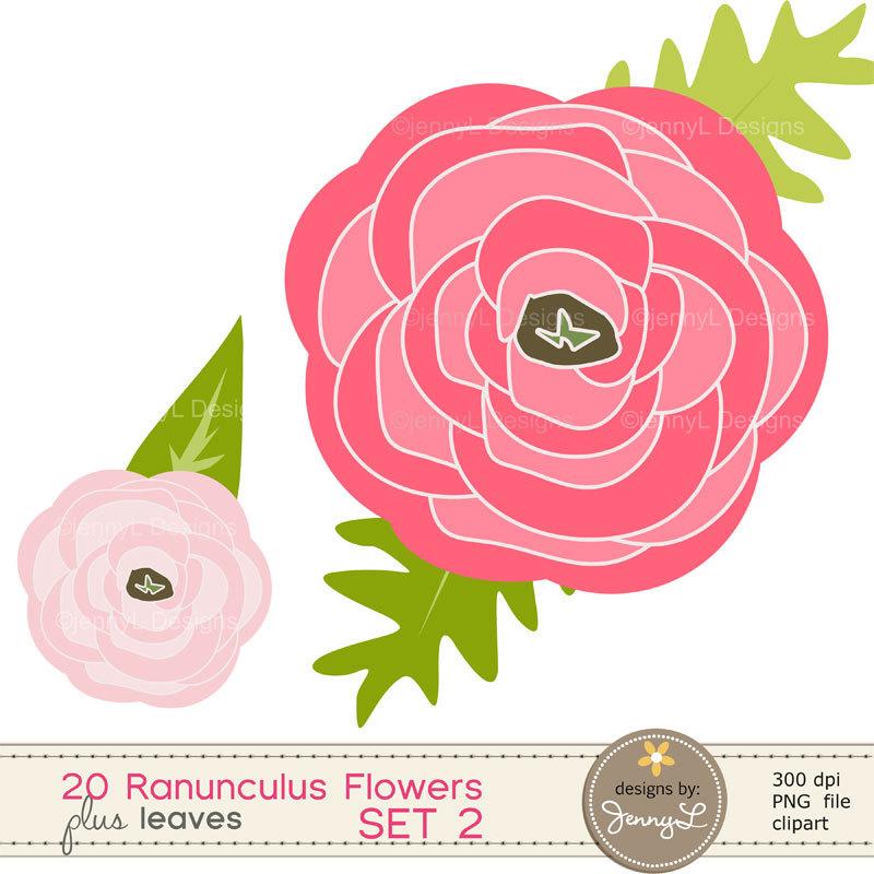 Ranuncula clipart flower leaves Set Flower OFF 50% Floral