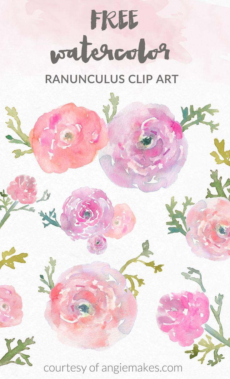 Ranuncula clipart flower burst Clip Pinterest ♥ Flower Art