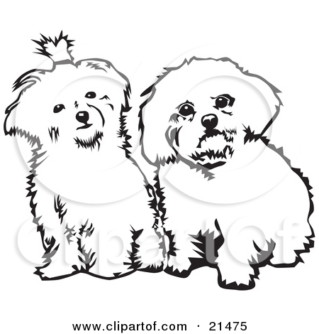 Pet clipart two dog Clip White Download Fluffy Puppy