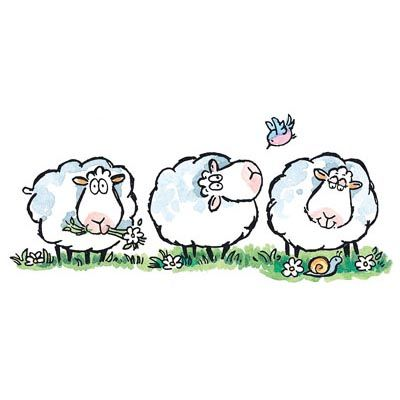 Drawn sheep clipart Pin Find Sheep this and