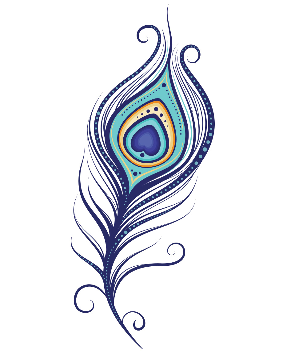 Peacock clipart sketch Clipart Feather Vector Art Free