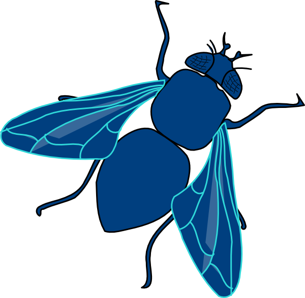 Fly clipart  Blue art clip at
