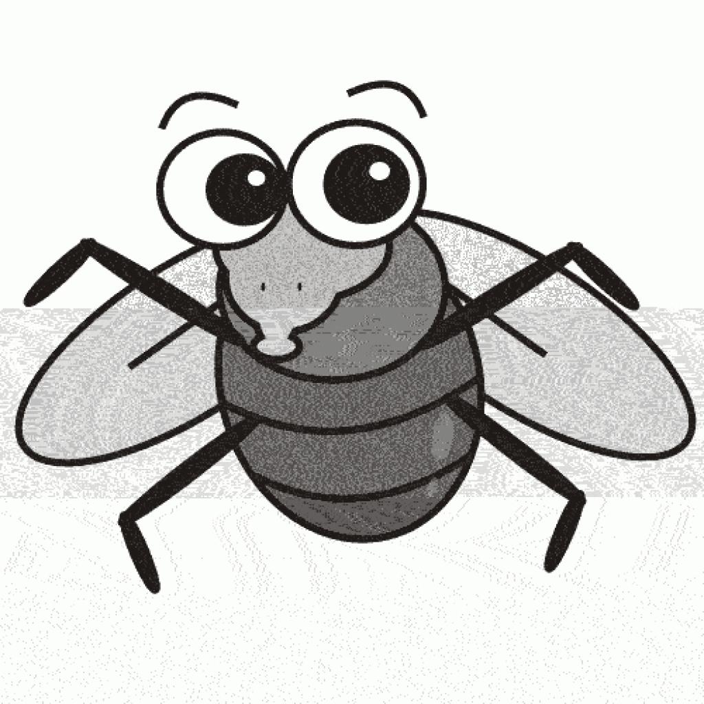 Fly clipart Regard clipart clipart fly fruit