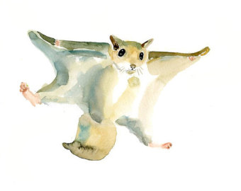 Flying Squirrel clipart Etsy DIMDImini Print Flying SQUIRREL
