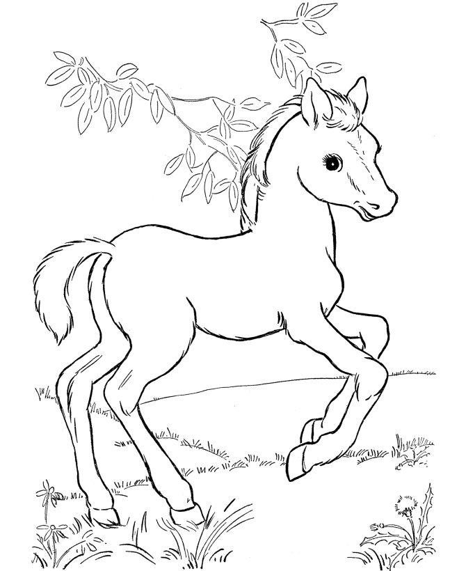 Drawn barbie horse On horse color pasture best