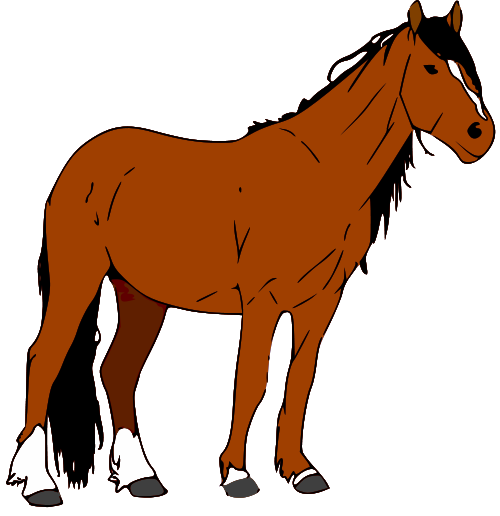 Brown clipart foal Horse Image Free Clipart Horse