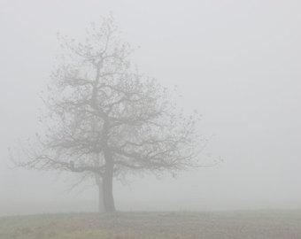 Fog clipart Overcast Foggy Foggy clipart Collection