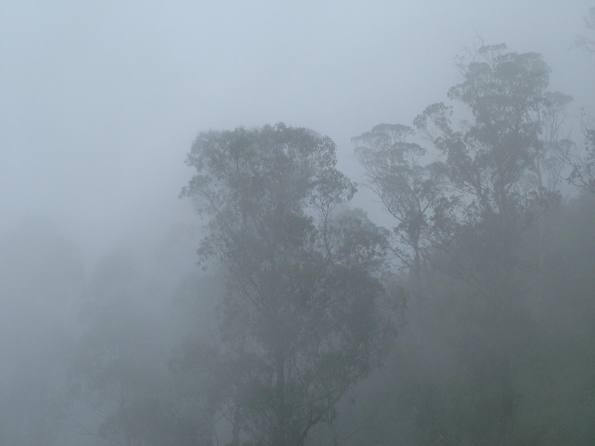 Fog clipart  Fog Clipart