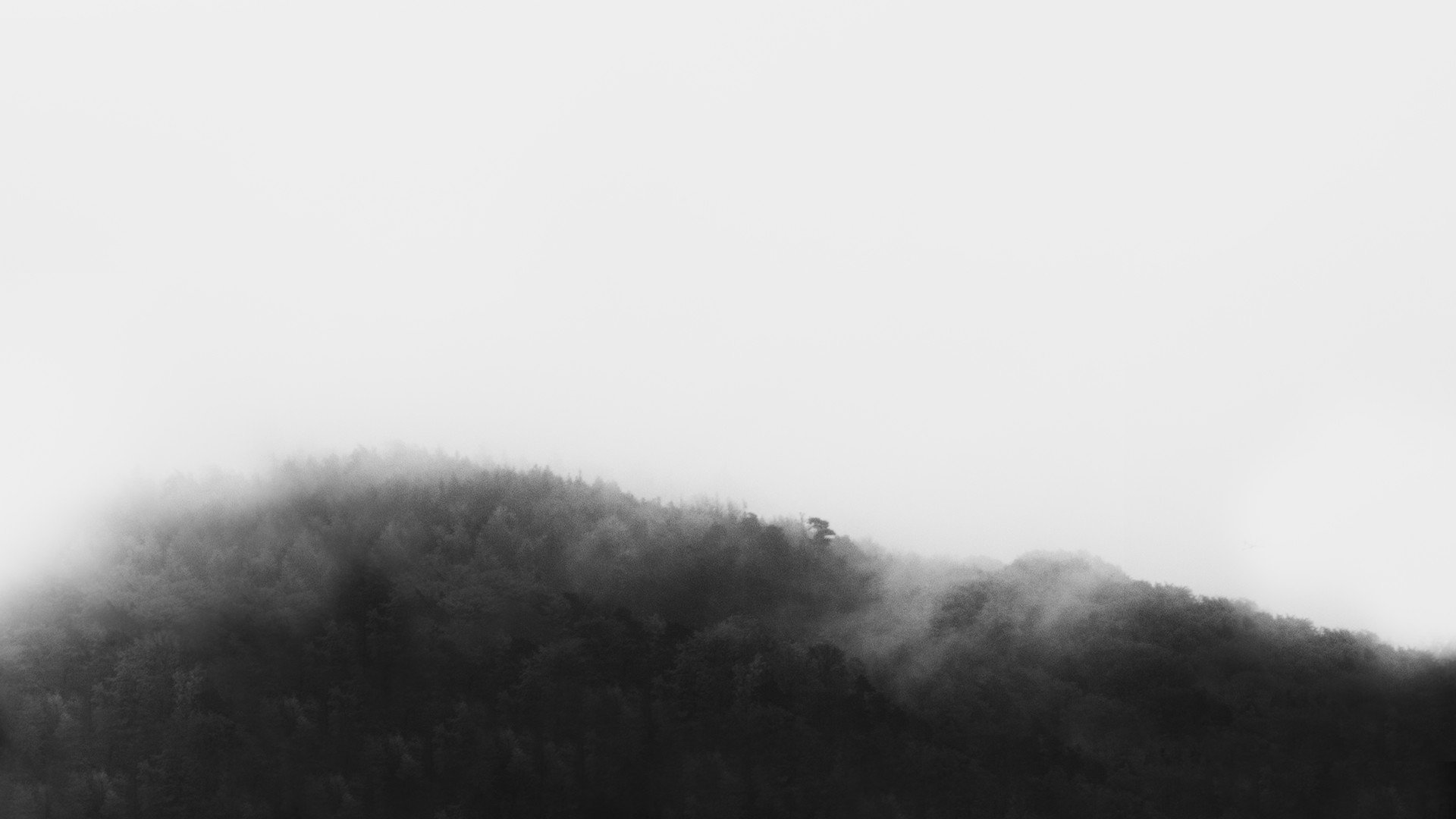 Fog clipart background tumblr  And Fotolip Wallpapers Tumblr