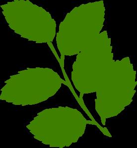 Foliage clipart Art Clip Clipart Clipart Leaves