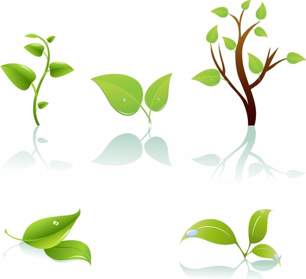 Branch clipart leave illustration Free tree commercial vector) for