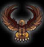 Football clipart hawk #10