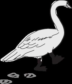 Footprint clipart goose Clip Art at Clip com