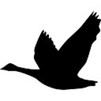 Footprint clipart goose Download Free Goose Icons footprints