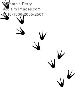 Footprint clipart penguin Images Some Could Ideas penguin