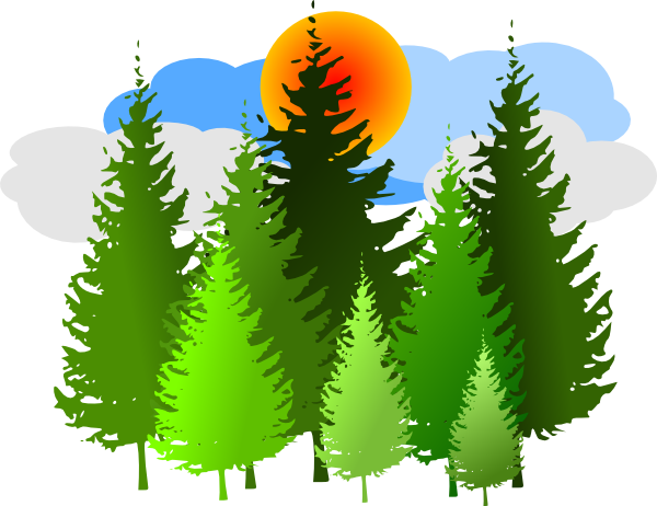 Tree clipart forest tree #11