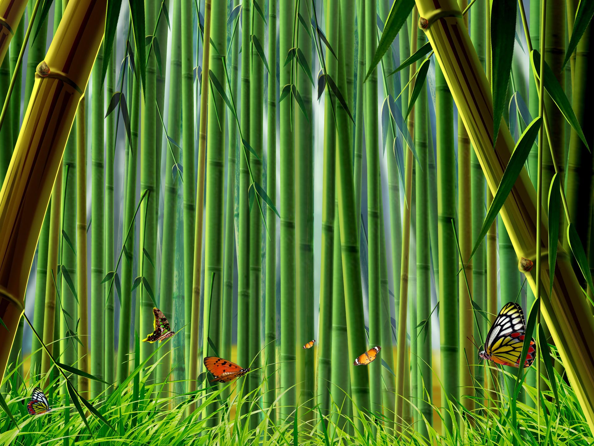Forest clipart bamboo forest Clip clipart Bamboo Art Bamboo