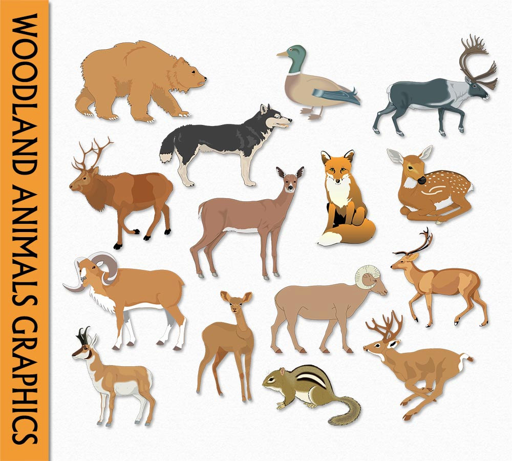 Wildlife clipart scenery Clip Scrapbook Art  Forest