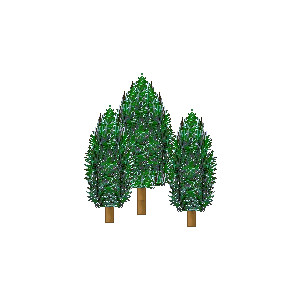 Pine Tree clipart forest tree Of Tree of forest groups