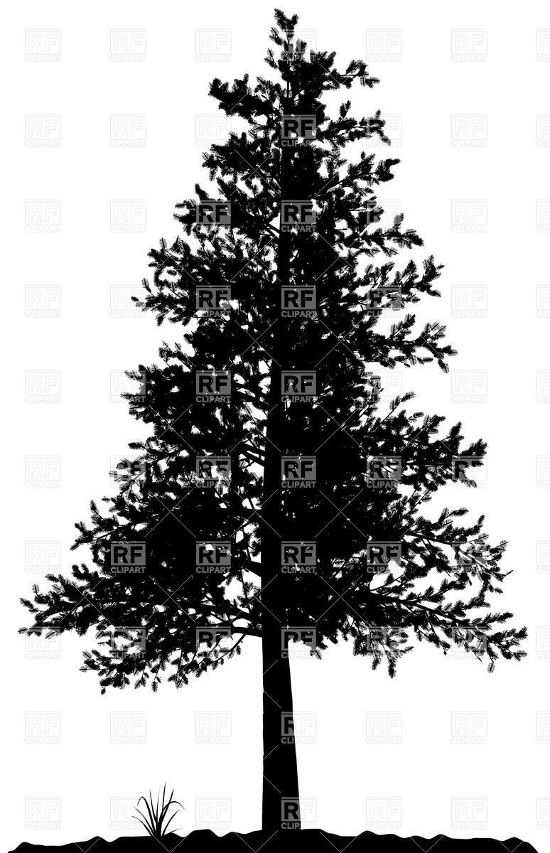 Pine Tree clipart tree silhouette High pine detailed pine tree