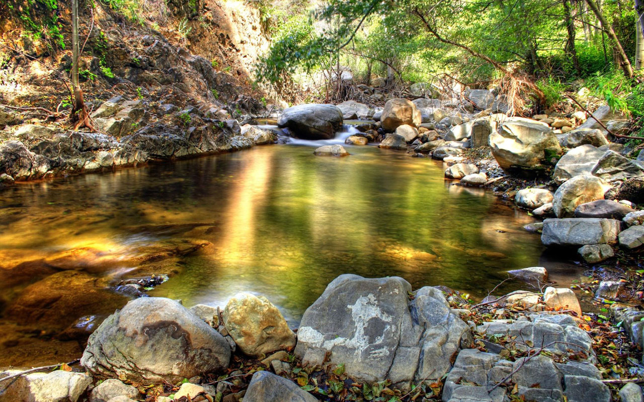 Forest clipart water stream  wallpaper Mountain Forest Stream