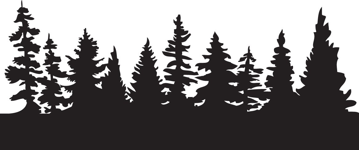 Pine clipart forest tree Tree Spruce collection of trees