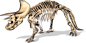 Fossil clipart Clipart Fossil Clip Clipart Panda