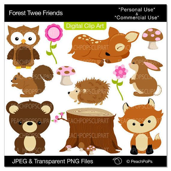 Rabbit clipart forest animal #8