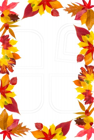 Leaves clipart boarder Collection clipart Clipart svg Arrosoir