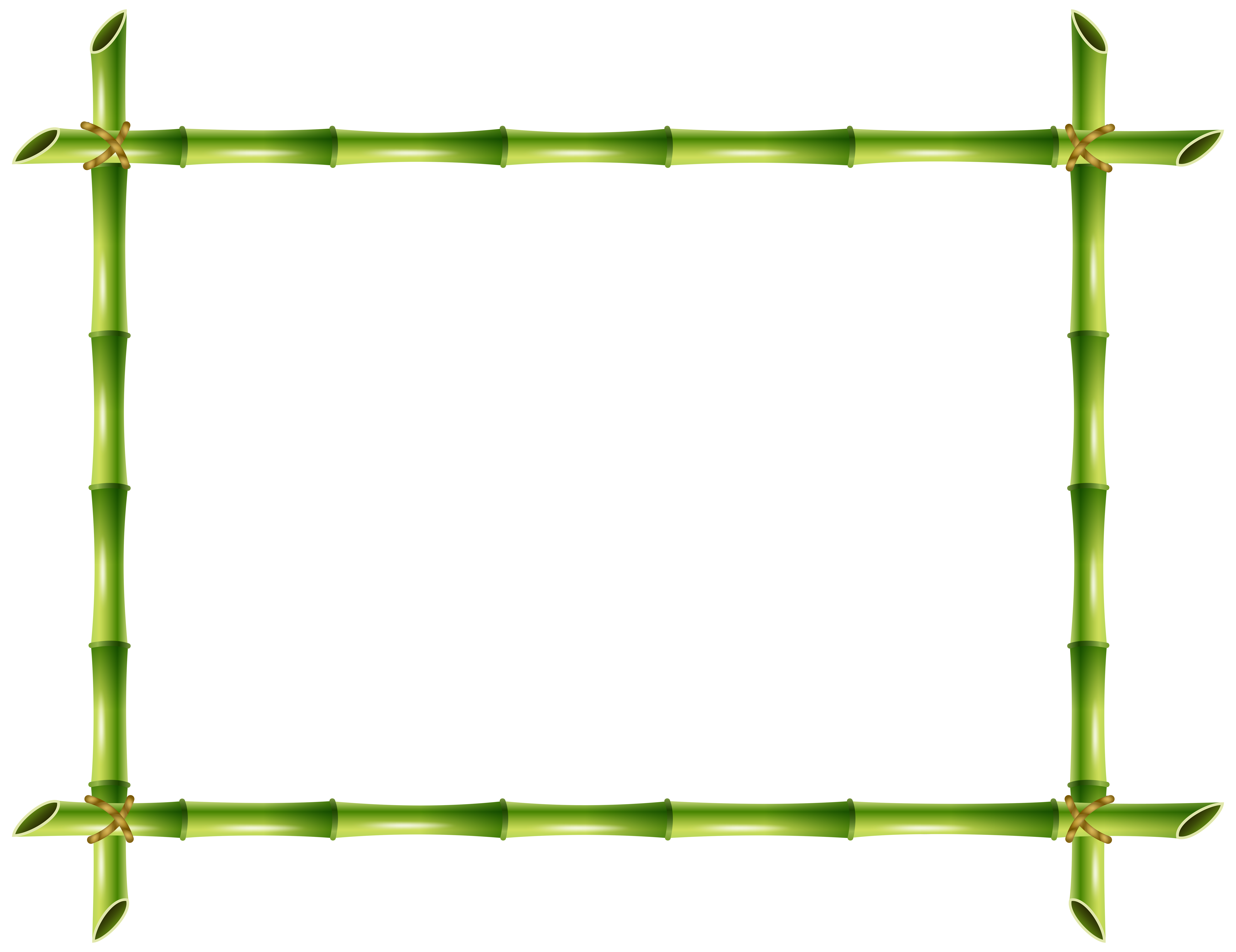 Bamboo clipart bamboo pole Yopriceville Transparent PNG size View