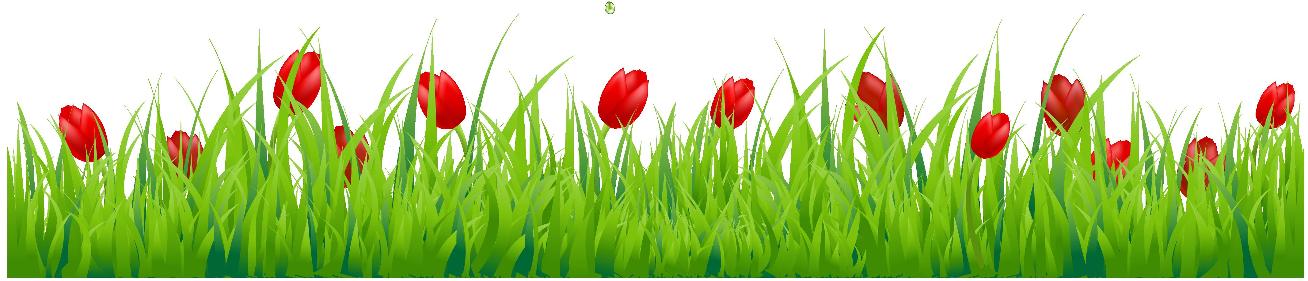 Tulip clipart border #5