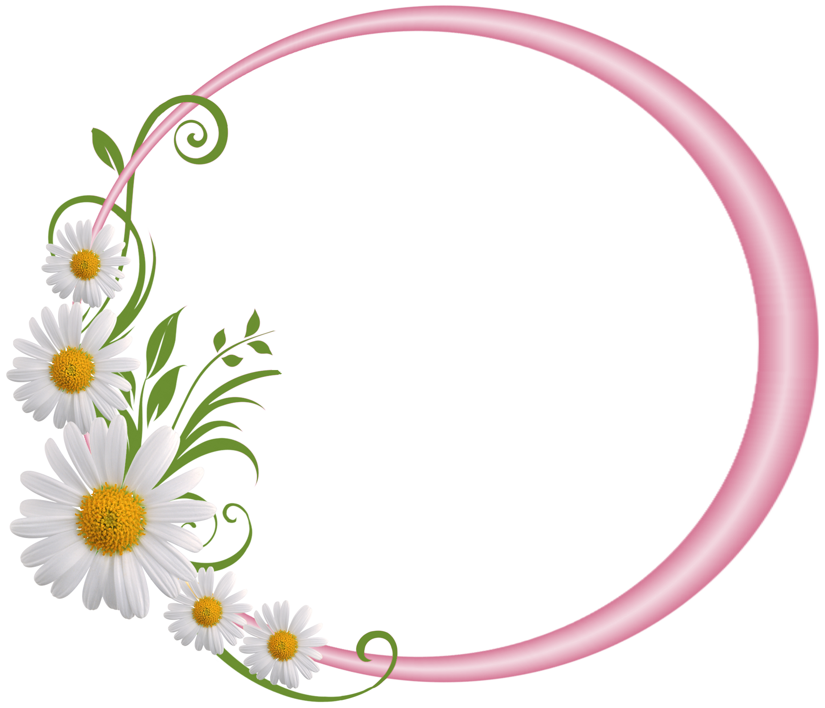 Frame clipart round Daisies Hej with Daisies Pink
