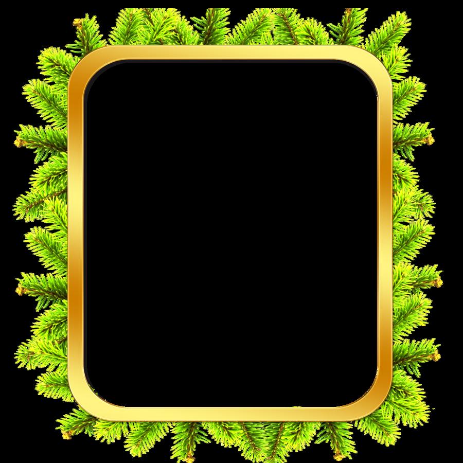 Tree clipart frame #7