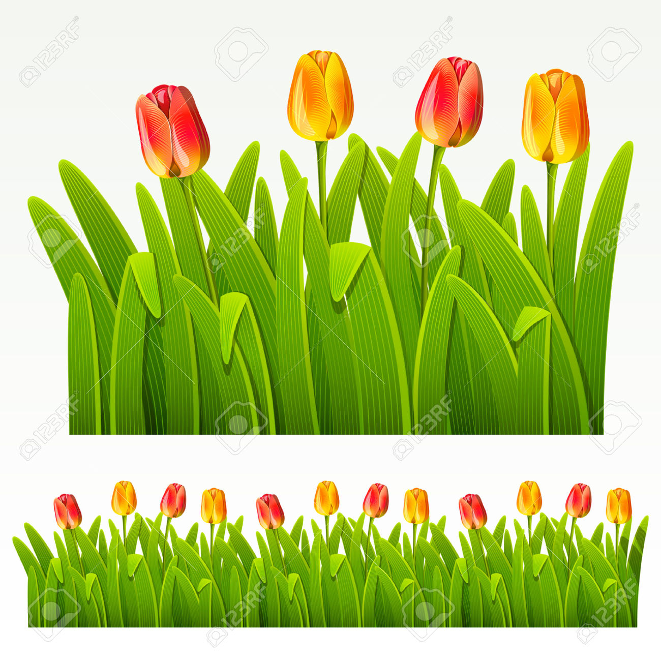 Frame clipart tulip Tulips Tulip Red Clipart cliparts