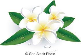 Frangipani clipart caribbean  AI JPEG Art white