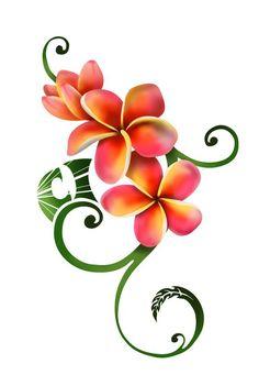 Frangipani clipart caribbean Plumeria+Tattoo+Drawings Plumeria Flowers White on