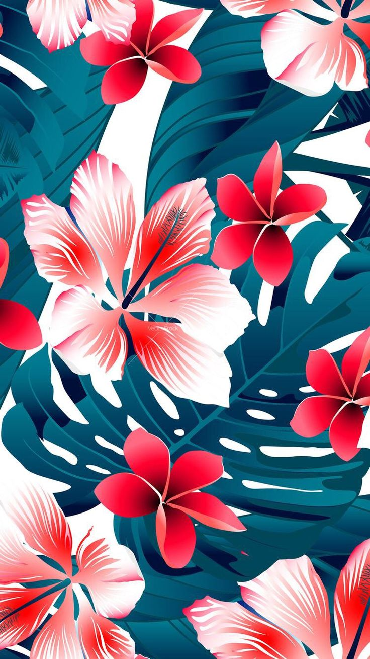 Frangipani clipart bali Ideas on Tropical background best