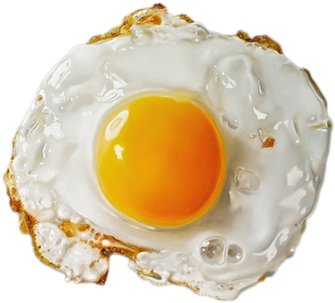 Fried Egg clipart transparent Isolated Full Egg Download Photo