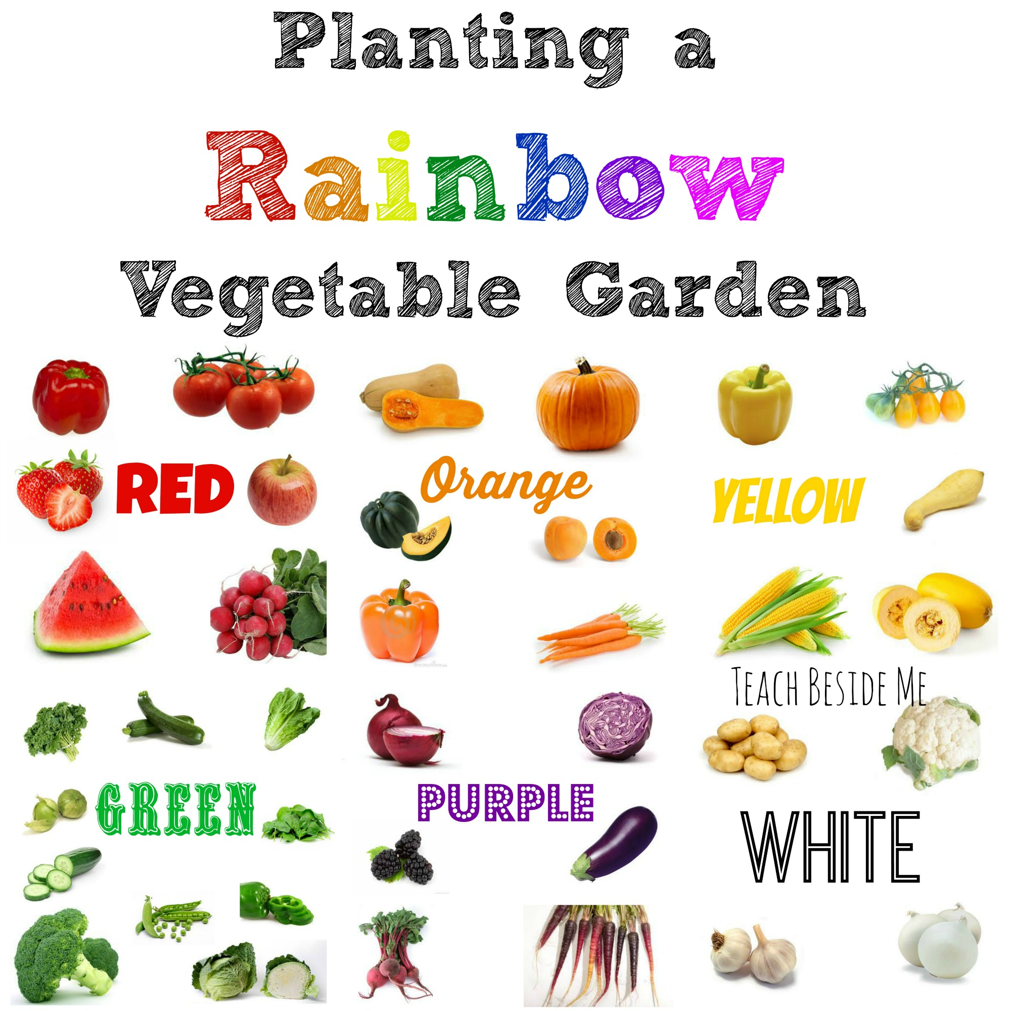 Hiking clipart family gardening Planting a a Rainbow Vegetable