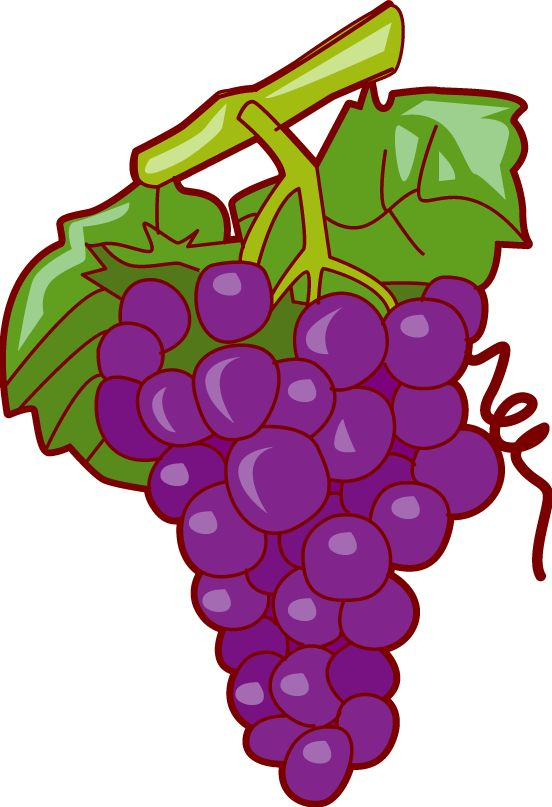 Grape clipart leafy vegetable Purple ArtFruit 15 Pinterest Grapes