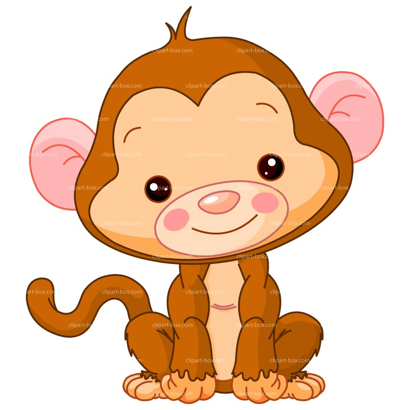 Turtle clipart baby monkey #3