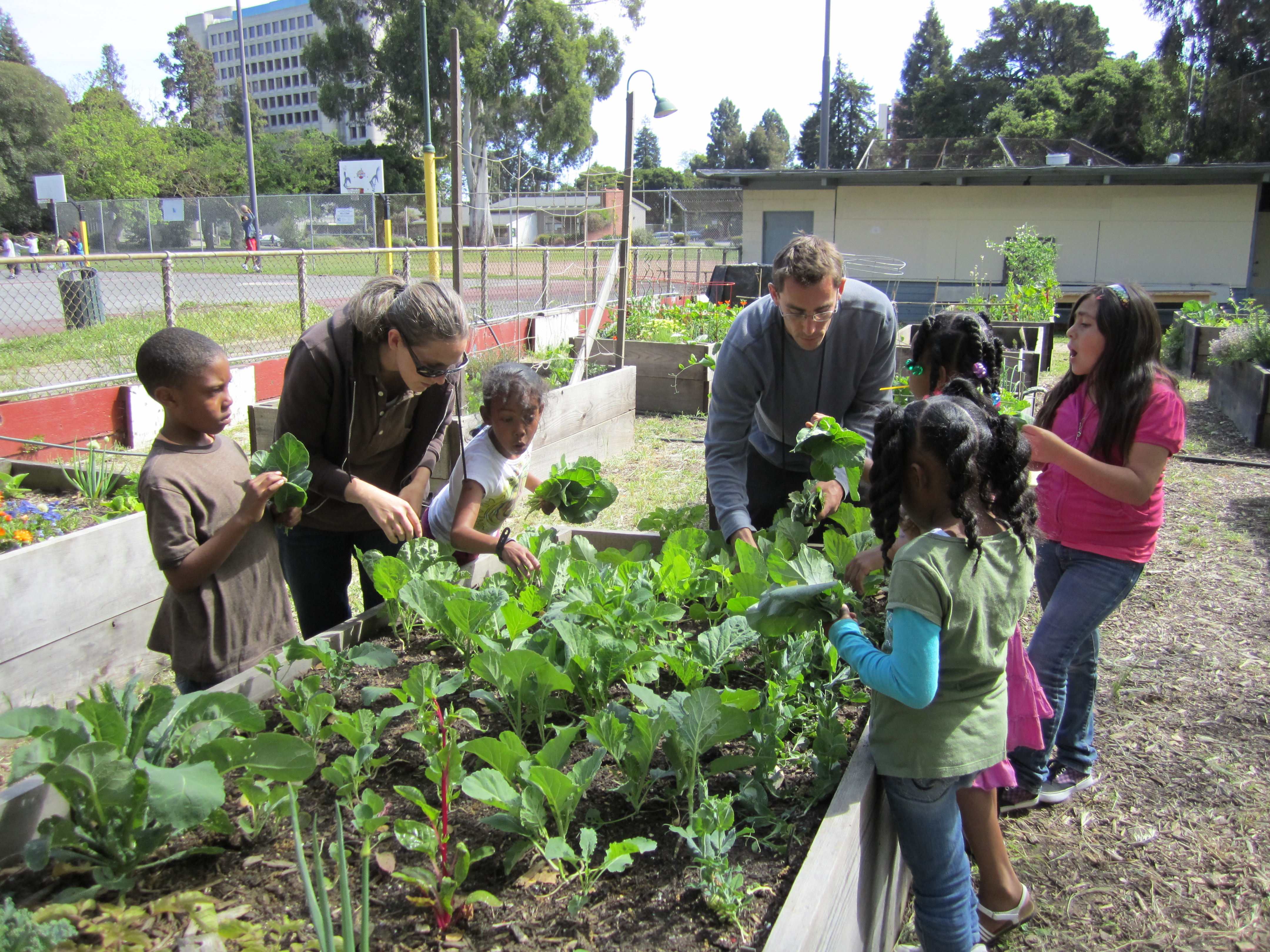Gate clipart community garden Of Mosswood Thumbnail Community Programs