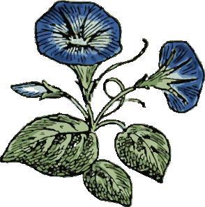 Carnation clipart sympathy Flowers art clip  Glory