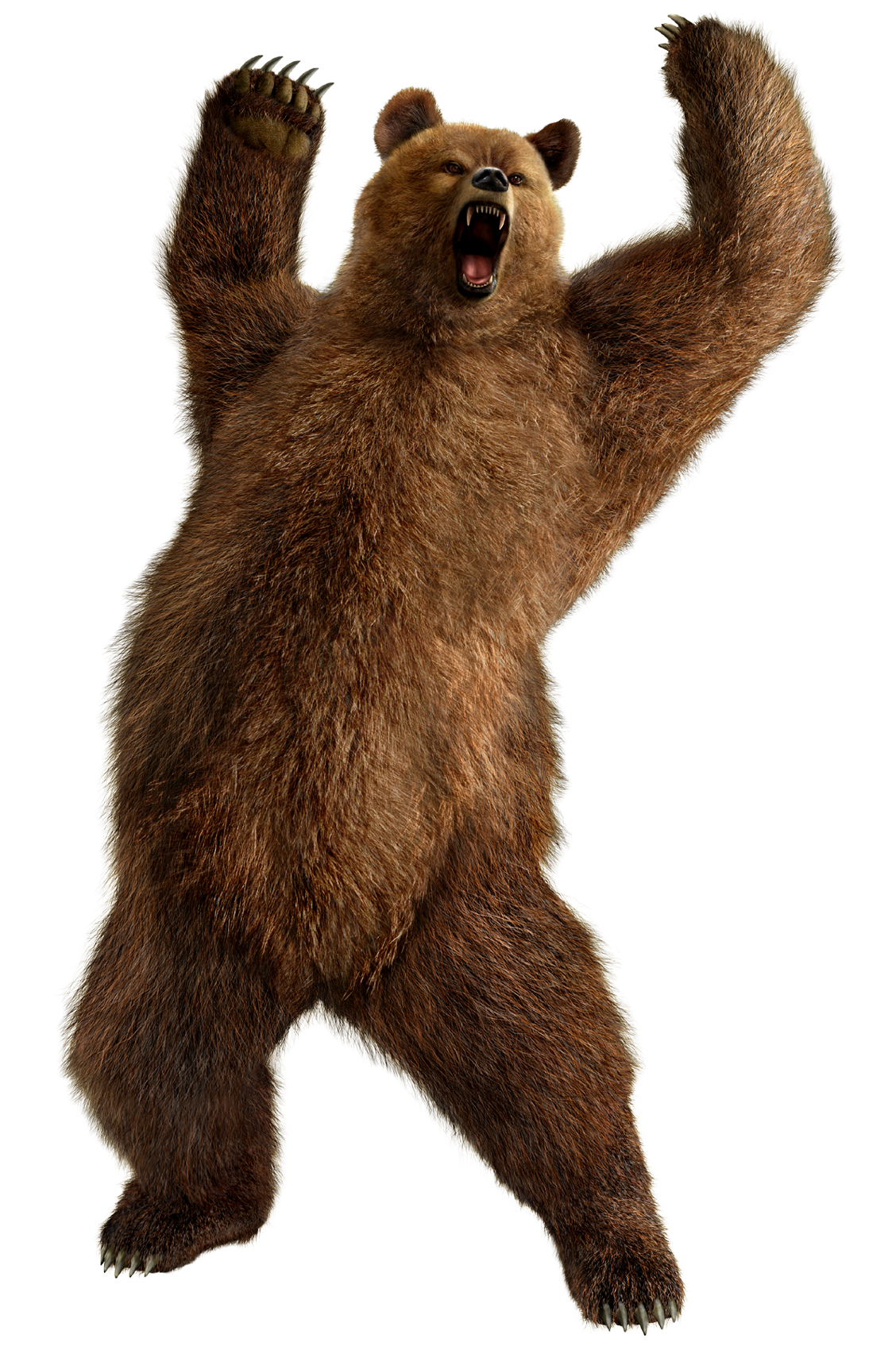 Furry clipart big bear #11
