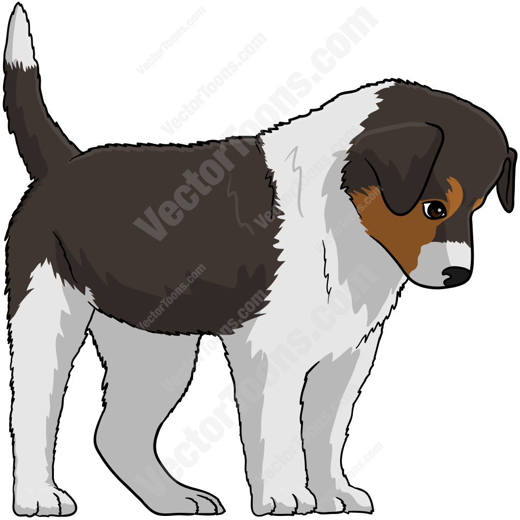 Border Collie clipart cute And White And Looking And