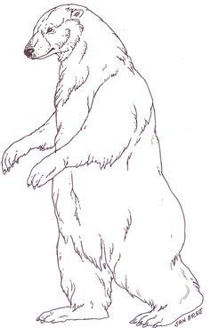 Drawn polar  bear snow bear Baby Snow Murals com/mural_tsb/mural_three_snow_bears_main