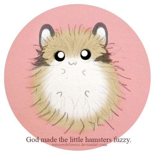 Fuzzy clipart hamster #8